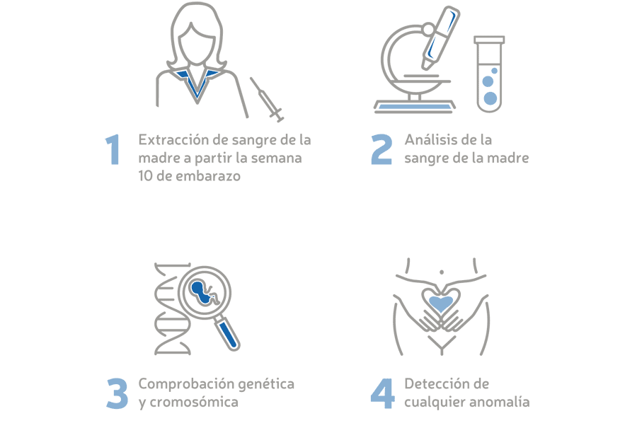 Infografía BabyTest Plus