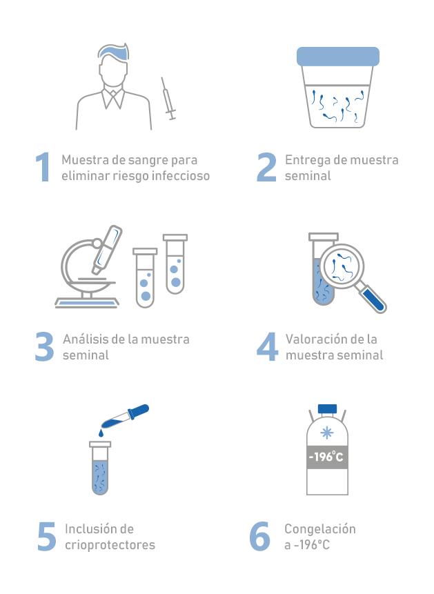 Infografia-congelacion-semen-V (1)