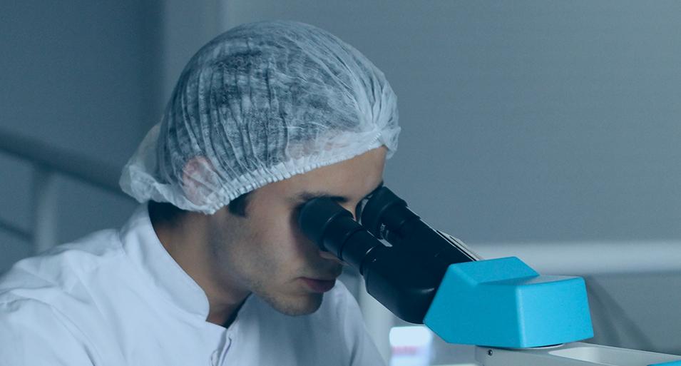 proceso de una fecundación in vitro